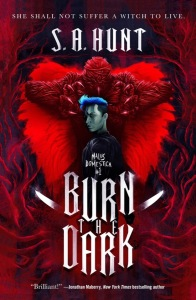 Burn the Dark by S.A. Hunt